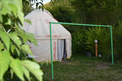 Comfortable yurts placed in garden