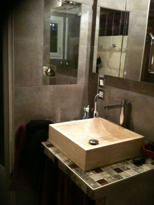 Lavabo de la salle de bain, juxtaposant la douche italienne et les WC