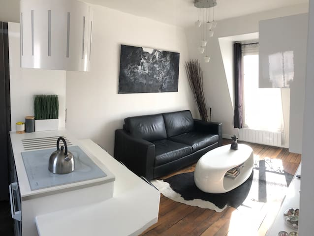 Beautiful 2 bedrooms in Le Marais