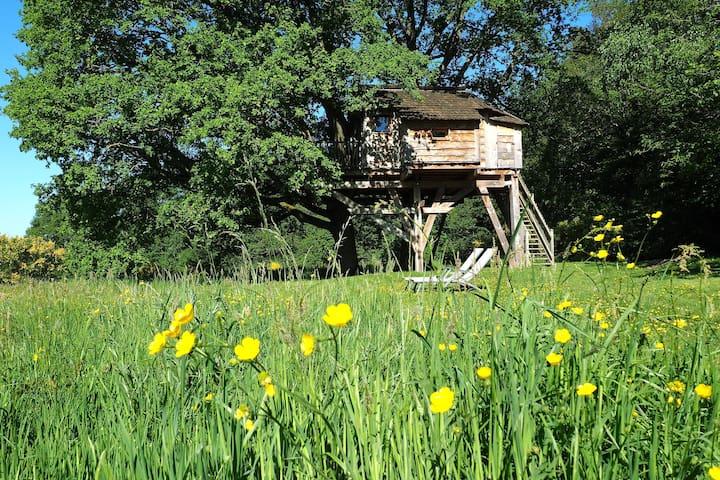 La Cabane du Perche (la cabane des chênes)
