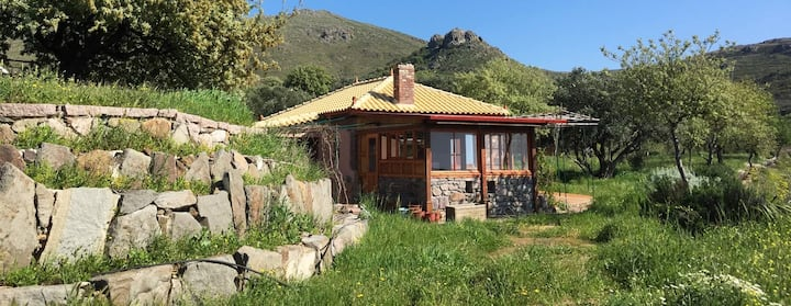 Skordalos Eco-house in Eressos