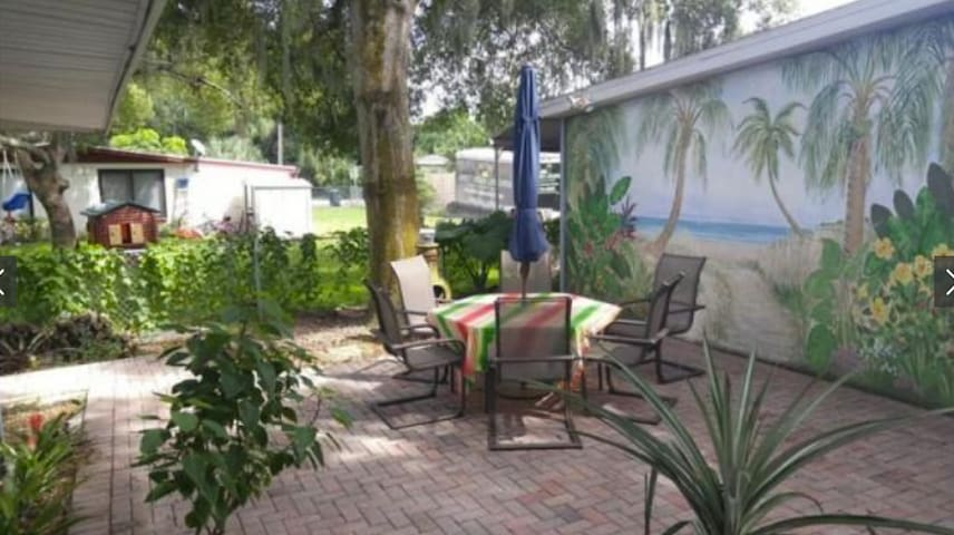 Quaint bungalow walking distance to Tampa Bay - Safety Harbor - Huis