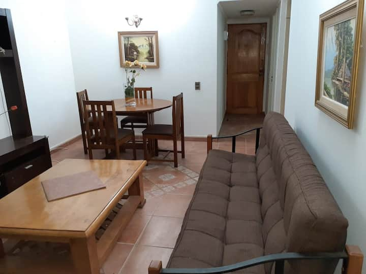 Furnished apartment in the center of Viña del Mar