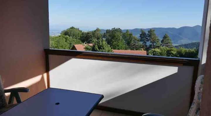 F2 Trois-Épis, résidence calme, vue plaine Alsace