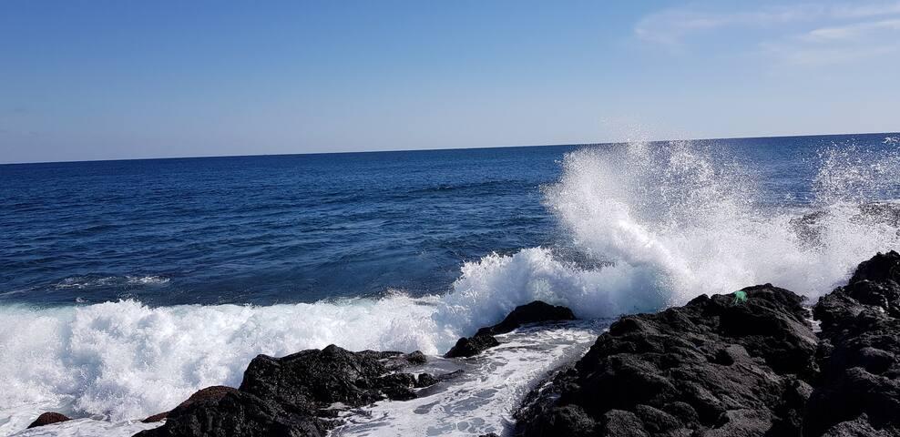근처 해안가