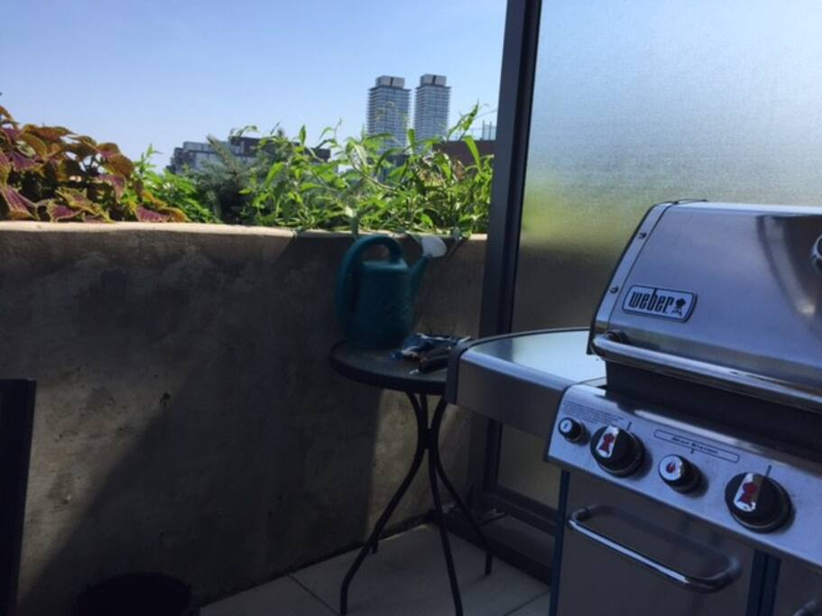 High end webber BBQ with gas line