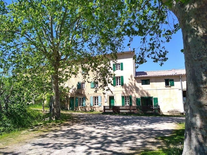 Chambres sur domaine viticole bio en pleine nature
