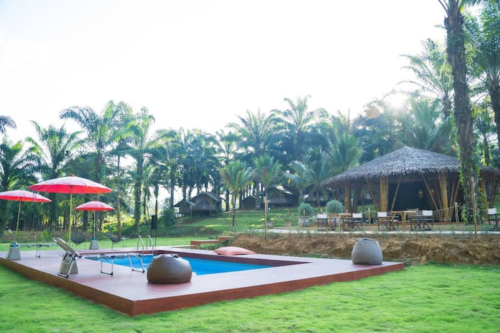 Khaosok Ecolodge - Glamping at its best