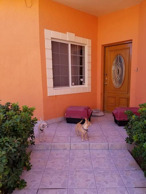Casa familiar con temibles guardias de seguridad (dos Chihuahuas que permanecerán en poco contacto con los huéspedes). Espacio de estacionamiento disponible dentro de la propiedad.