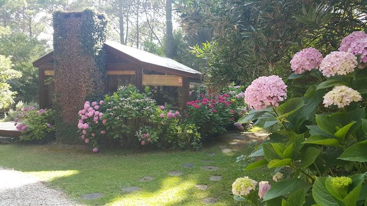 Cabaña encantada en bosque Cariló