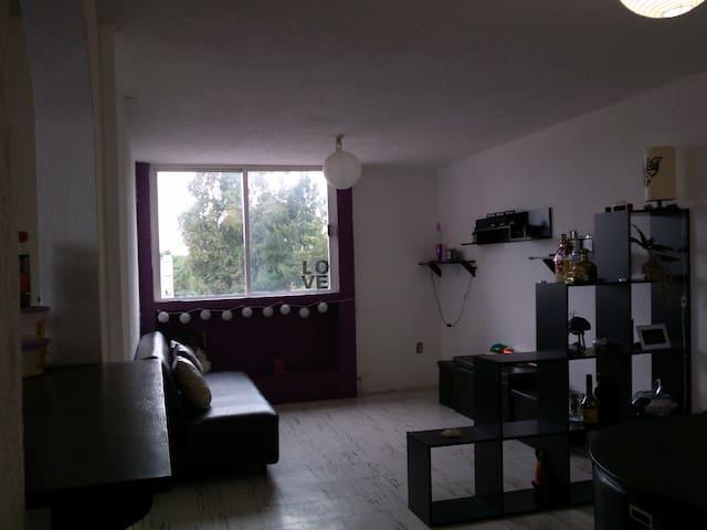 Estancia con sofa cama Dpto en Azcapotzalco - เม็กซิโกซิตี้ - อพาร์ทเมนท์