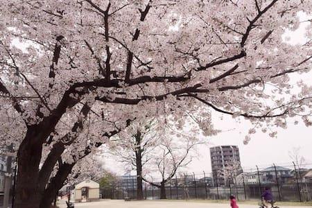 桜の公園まで歩ける!博多駅から7分!長期滞在にも♪4F(EV有り) - Hakata Ward, Fukuoka