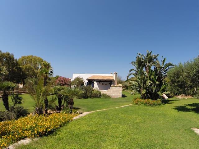 Villa a Favignana  immersa nel verde