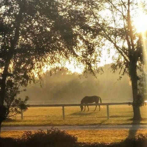 Red Gate Farms Hayloft-10 min to Historic Savannah