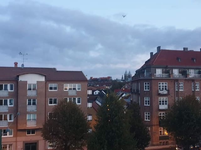 Spatious flat for rent in central Lund