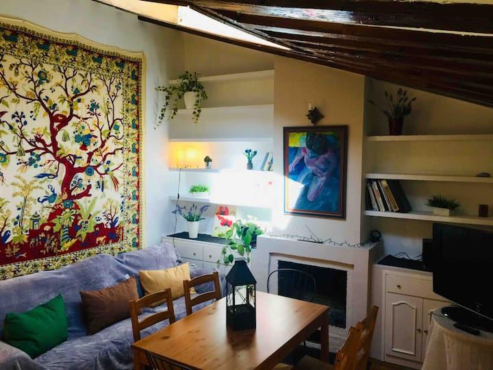 Fabulous apartment Madrid center