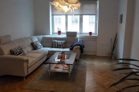 Comfortable apartment in the heart of the city - Wohnung