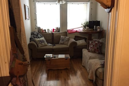 Cozy One Bedroom Apartment - Chicago - Appartement