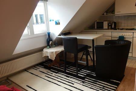 Comfortable Apartment in Hamburg - Hamburg - Pis