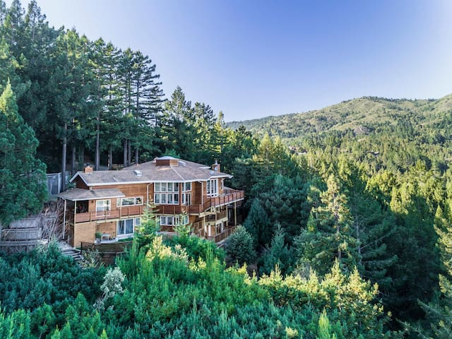 Art Maven's Mill Valley Masterpiece in the Sky