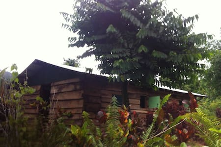 3 rivers Eco Lodge, dormitory bunk with BREAKFAST