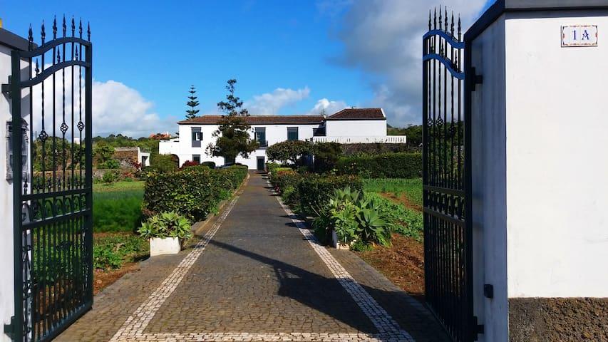 Ninho do Cedro - Azorean tranquility - Ponta Delgada - Guesthouse