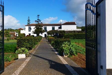 Ninho do Cedro - Azorean tranquility - Ponta Delgada - Gästehaus