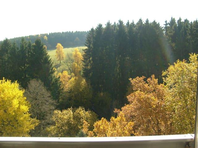Wohnung mit Balkon und Waldblick - Brilon - Apto. en complejo residencial