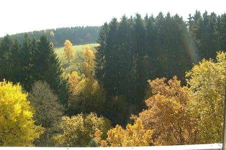 Wohnung mit Balkon und Waldblick - Brilon