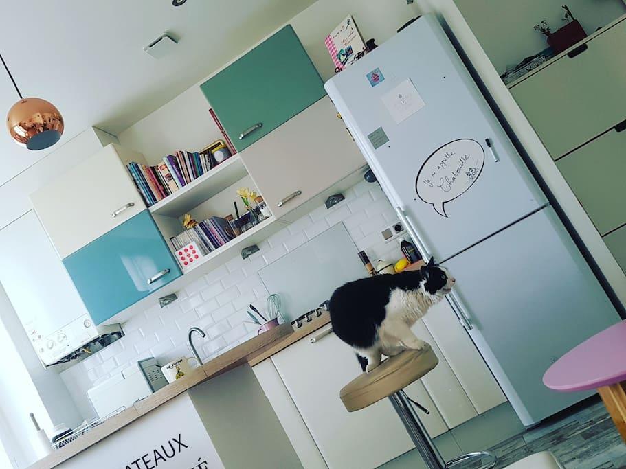 Bel appart cosy tb plac 18 39 paris 40m2 avec chat flats for rent in rosny sous bois le de - Boulangerie rosny sous bois ...