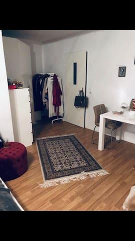 Tolles gemütliches 1-Apartment direkt am HBF!
