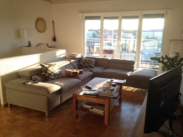 Beautiful 2-floor maisonette - Basel - Apartment