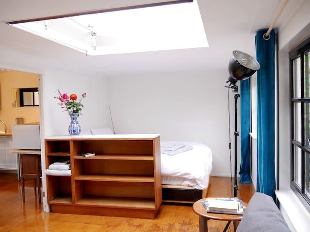Rustic green studio near the center - Haarlem - Appartement