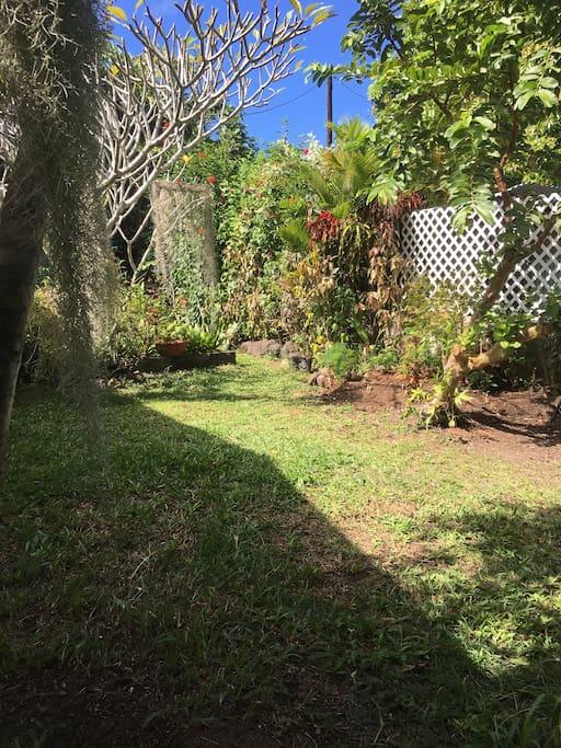 Petit coin de jardin situé à l'arrière de la maison où vous pourrez planter votre tente