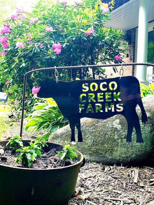 Welcome to Soco Creek Farms