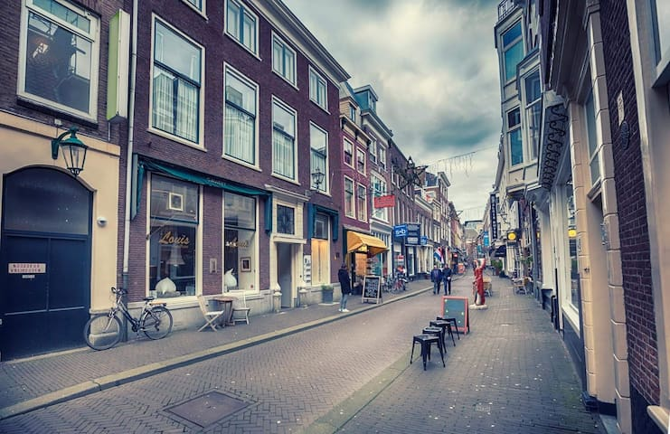 Historic B&B in the city center of The Hague 1+2