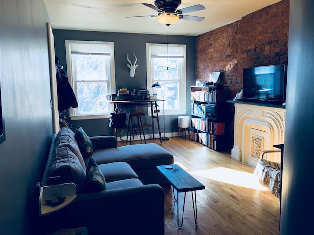Cozy East Rock Apartment, by Yale, Parks, & Pizza!