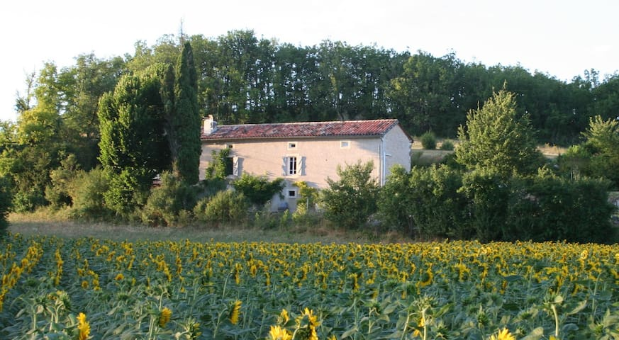 Luxury B&B near Cordes sur Ciel - Andillac - Bed & Breakfast