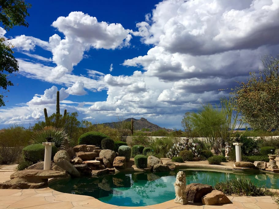 Private Casita on 5 acres with beautiful outdoor space, saguaro cacti and views
