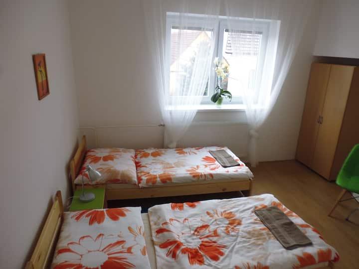 Pokoj se dvěma postelemi