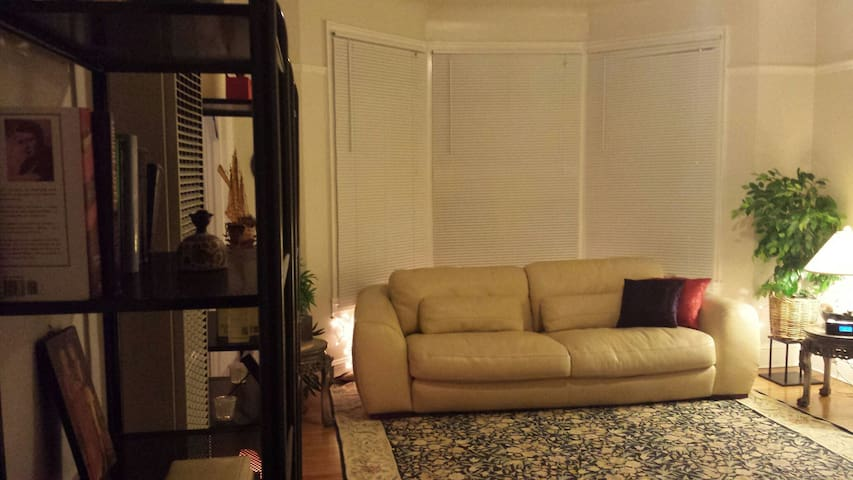 Lovely, central 1bd w/ full kitchen - San Francisco - Apartment