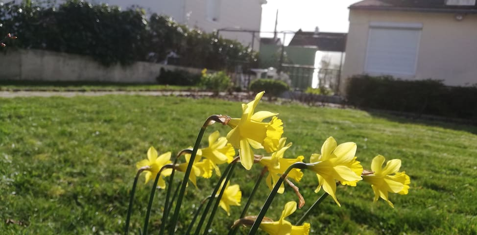 50m² plain pied avec jardin et abri vélo fermé