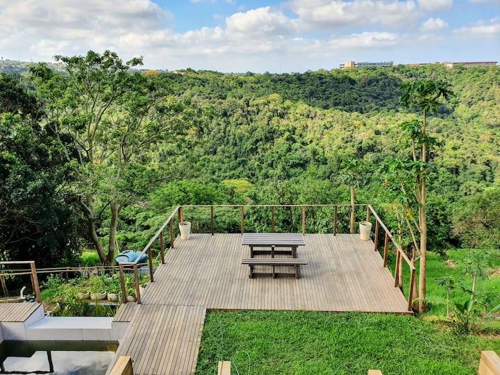 Jungle Oasis