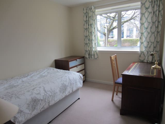 Single bed and desk in small bedroom