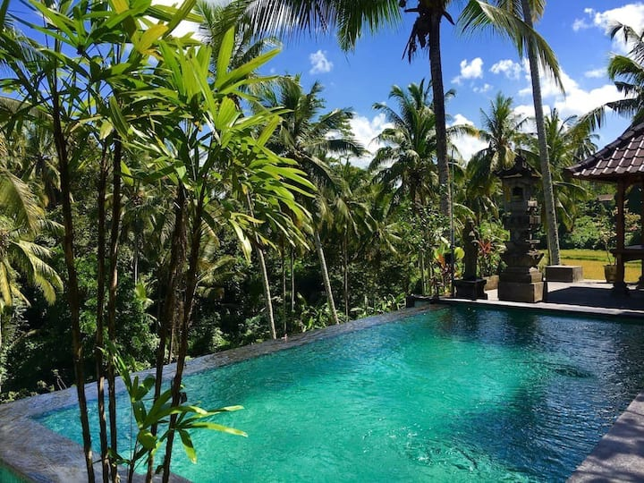 AMAZING! 1bedroom,view,rice terass,pool,breakfastB