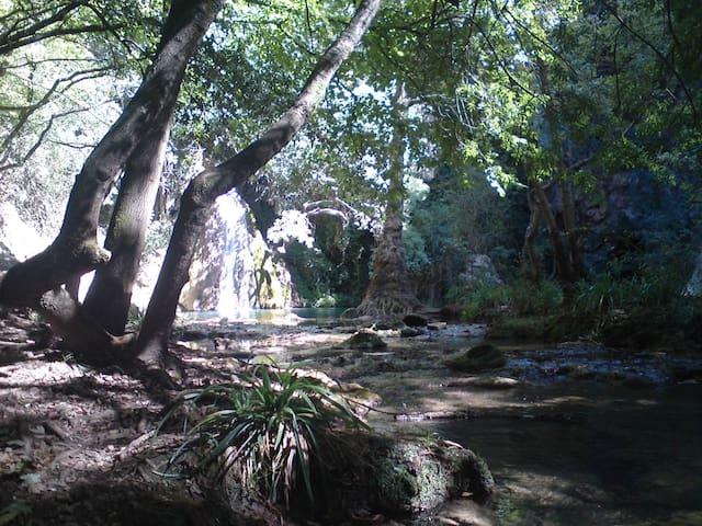 Rustique À Deux Étages Hideaway Forest Avec Un Centre De Voiture De Piste