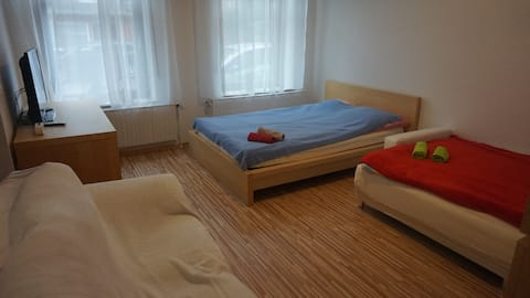 The Aachen Home - Two Bedrooms - Walking to Center