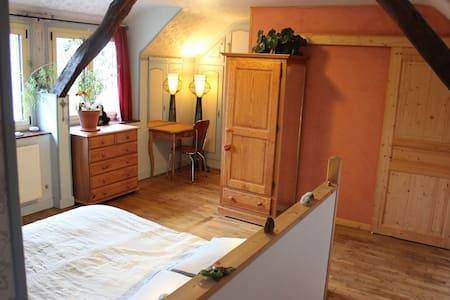Grande chambre, vue sur verger - Chinon