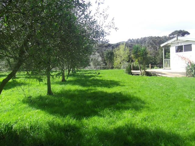 Peace in our olive grove self contained cottage