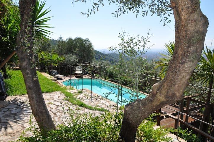 Villa Nocella - Vicopisano - Villa